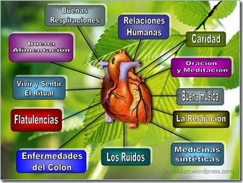 principios del corazon