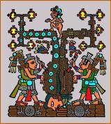 8-arbol-maya
